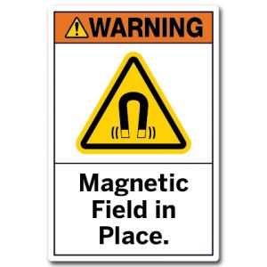 Magnetic Field In Place